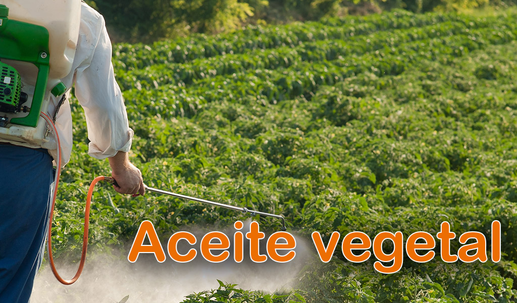Aceite vegetal (Acin-Oil)