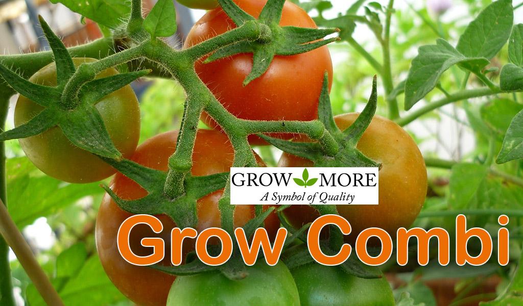Grow Combi