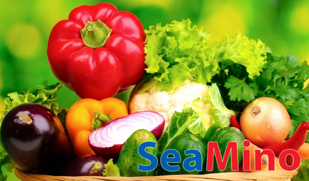 Sea-Mino