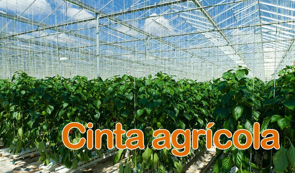 Cinta agrícola
