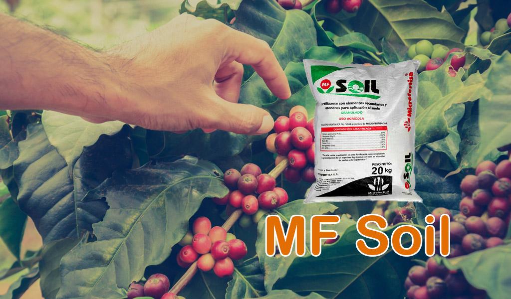 MF Soil
