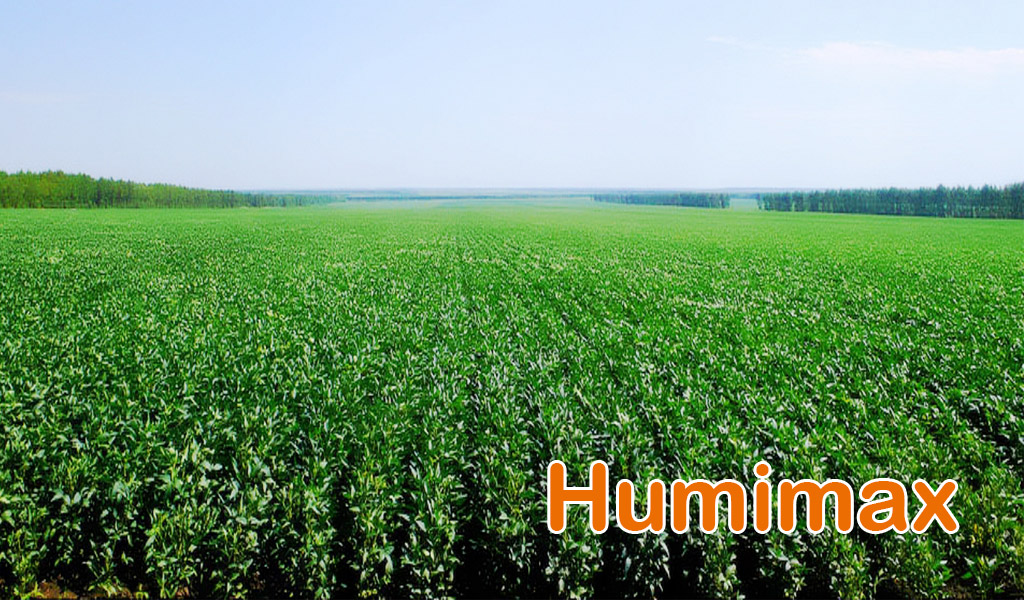 Humimax