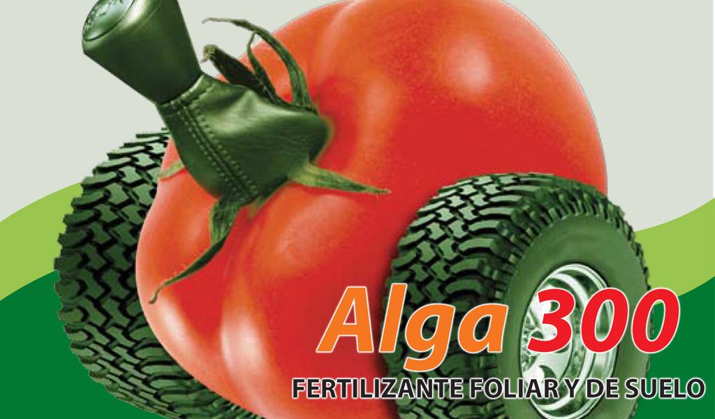 Alga 300