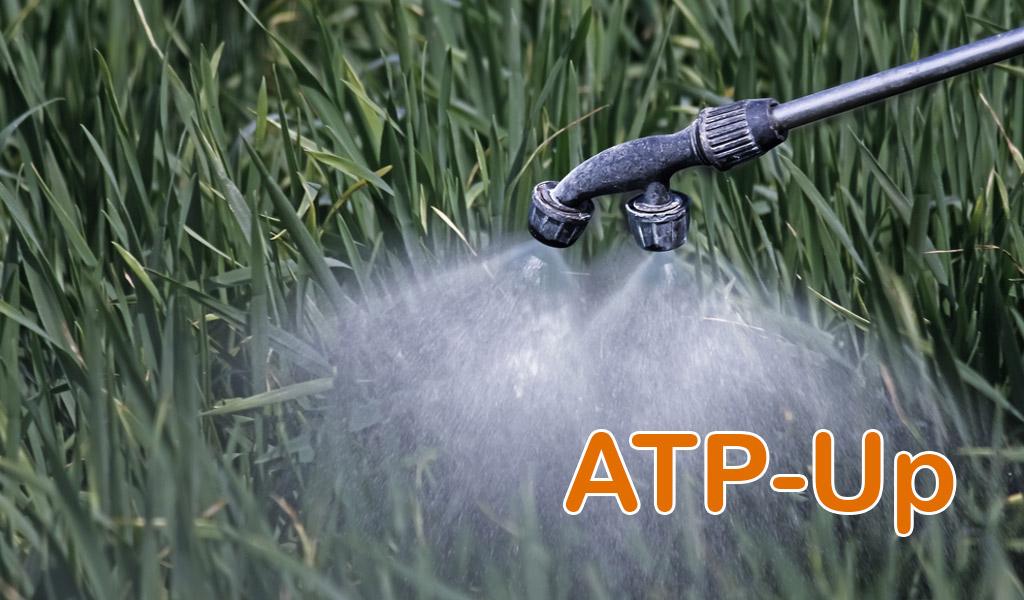 ATP-Up