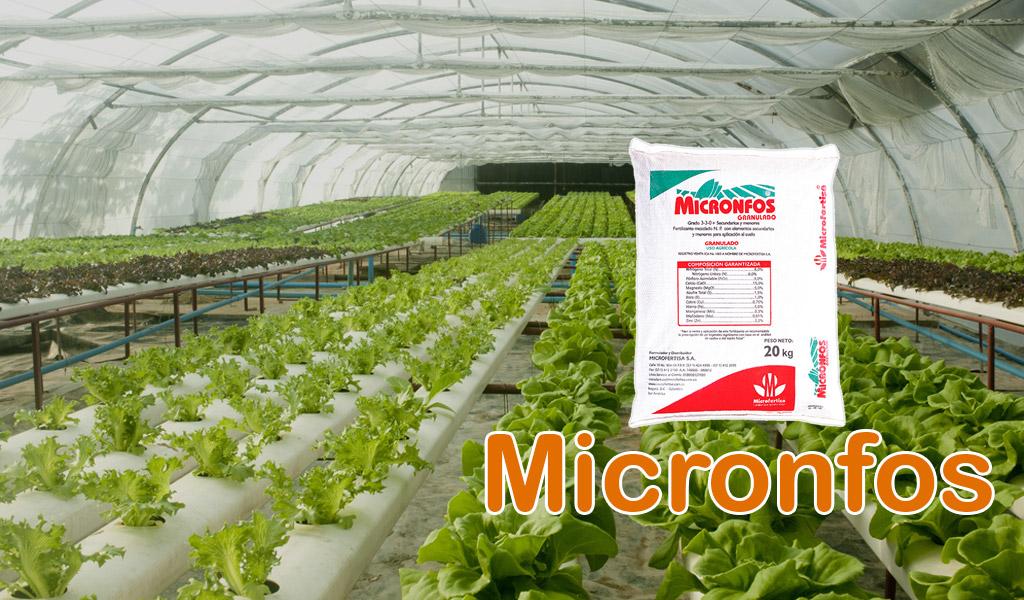 Micronfos